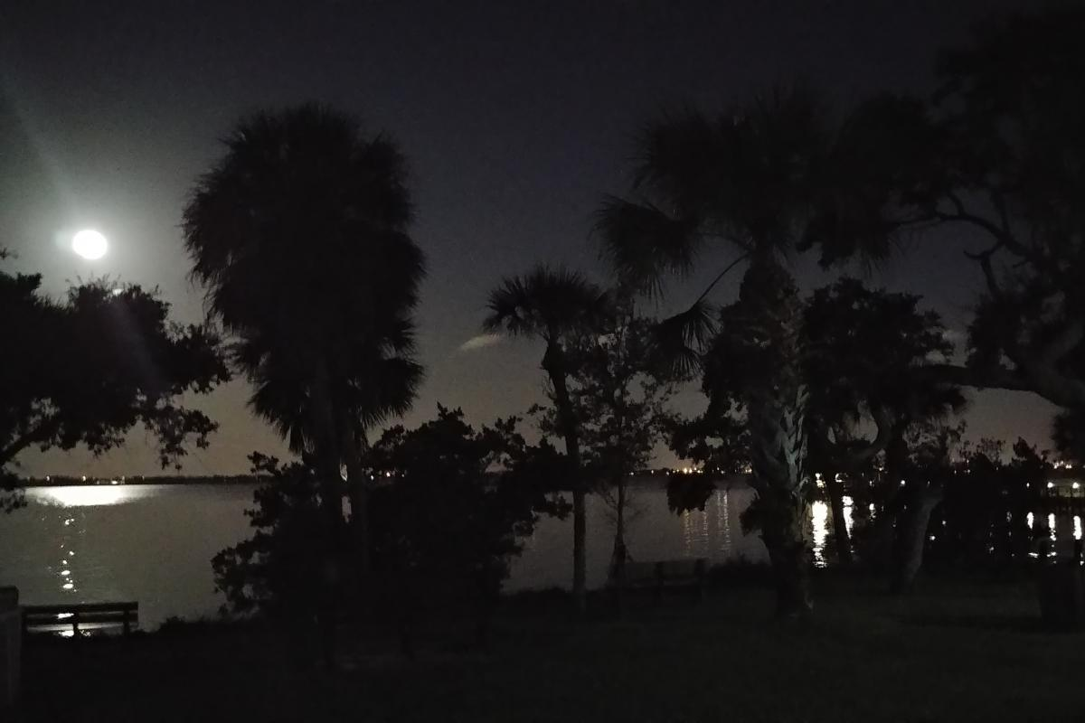 Moonlit Night at MB Pier
