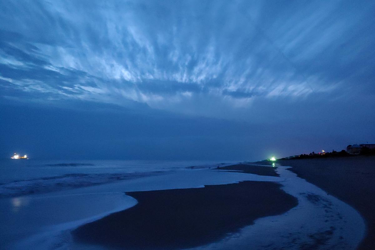 Ocean Park at Dawn